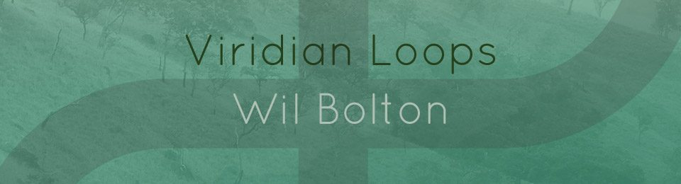 Wil Bolton